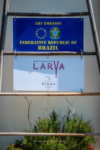 Brazilija - Larya